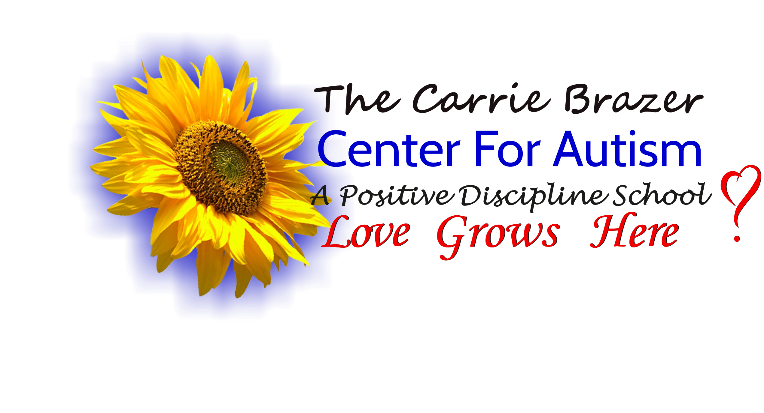 CARRIE BRAZER CENTER FOR AUTISM MIAMI FL